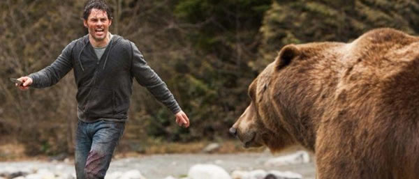 Animal Attack Season - Into The Grizzly Maze